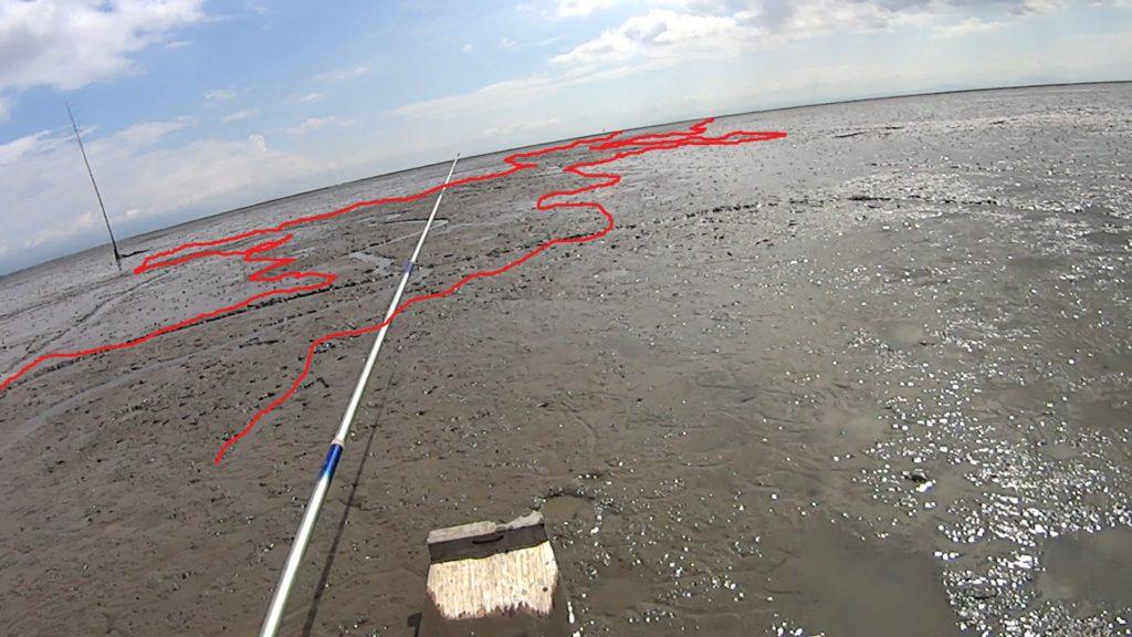 有明海 干潟