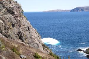 流氷  ニューファンドランド
