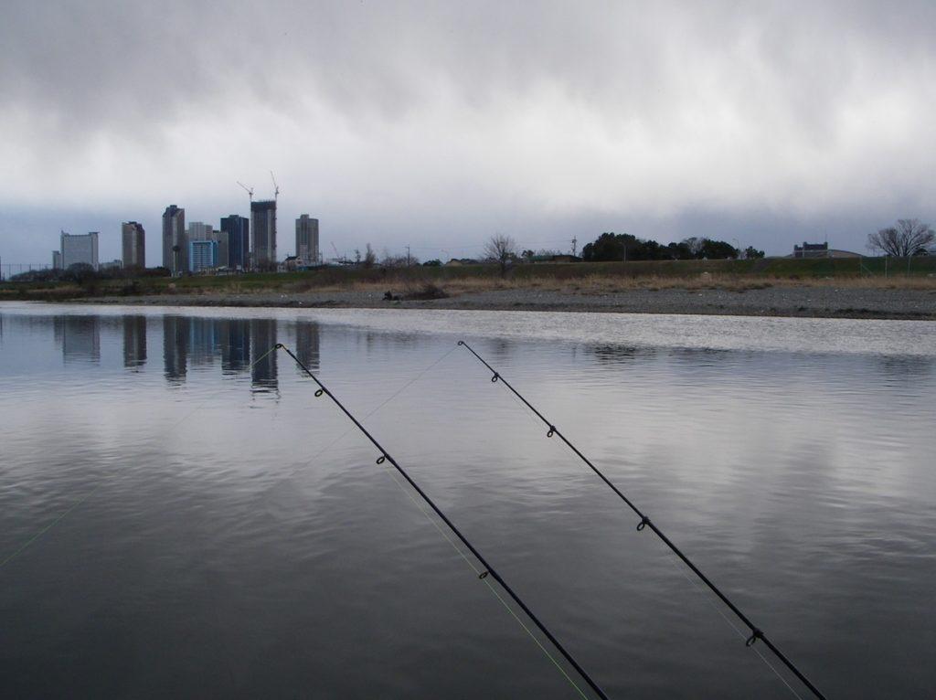 多摩川 釣り