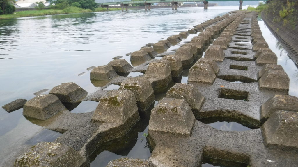 川 カニカゴ