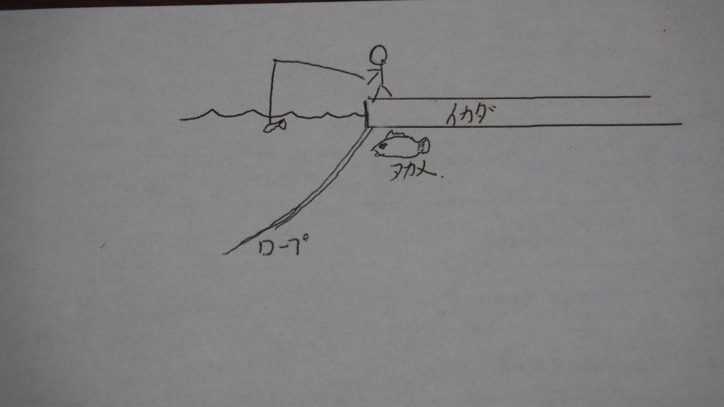 アカメ 釣り方